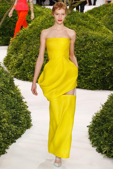 christian-dior-couture-spring-2013-vanessa-axente