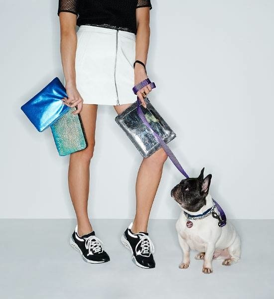 adorable-dogs-for-shopbops-latest-accessories-lookbook-4