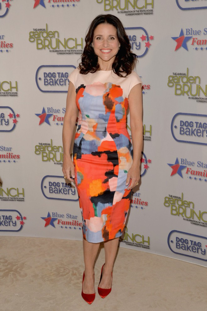 julia-louis-dreyfus-2014-annual-garden-brunch-washington-dc-lela-rose-pre-fall-2014-dress-rupert-sanderson-elba-pumps