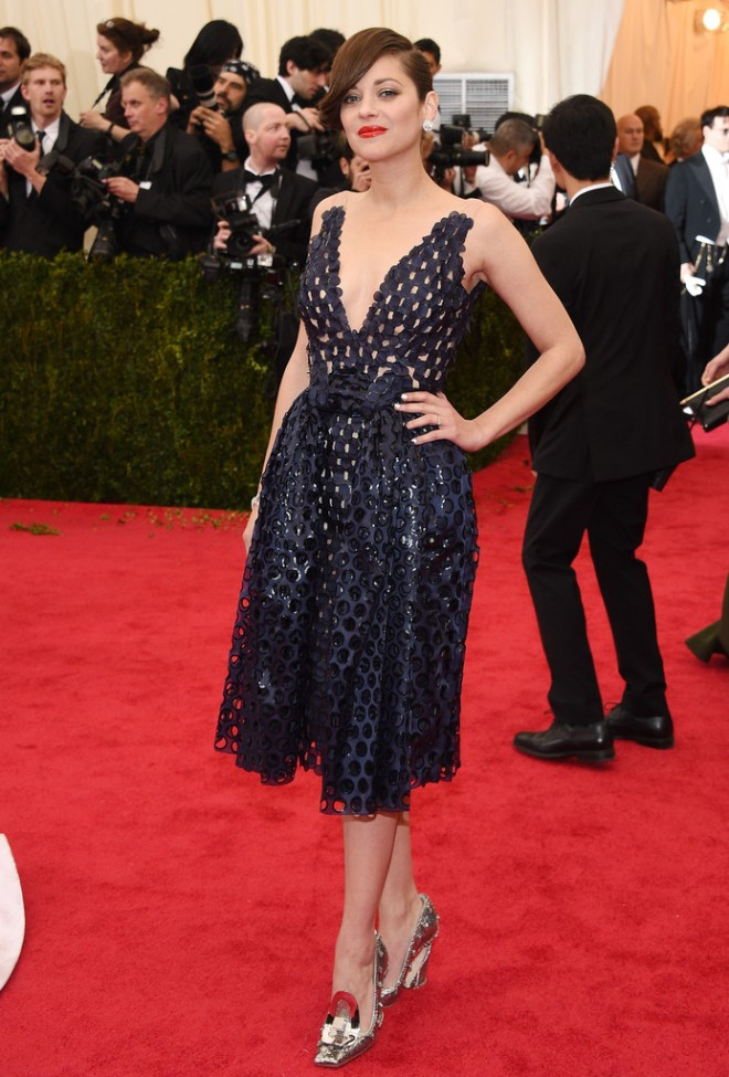 marion-cotillard-2014-met-gala-christian-dior-spring-2014-couture-dress-1